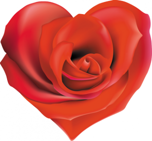 cora_rose